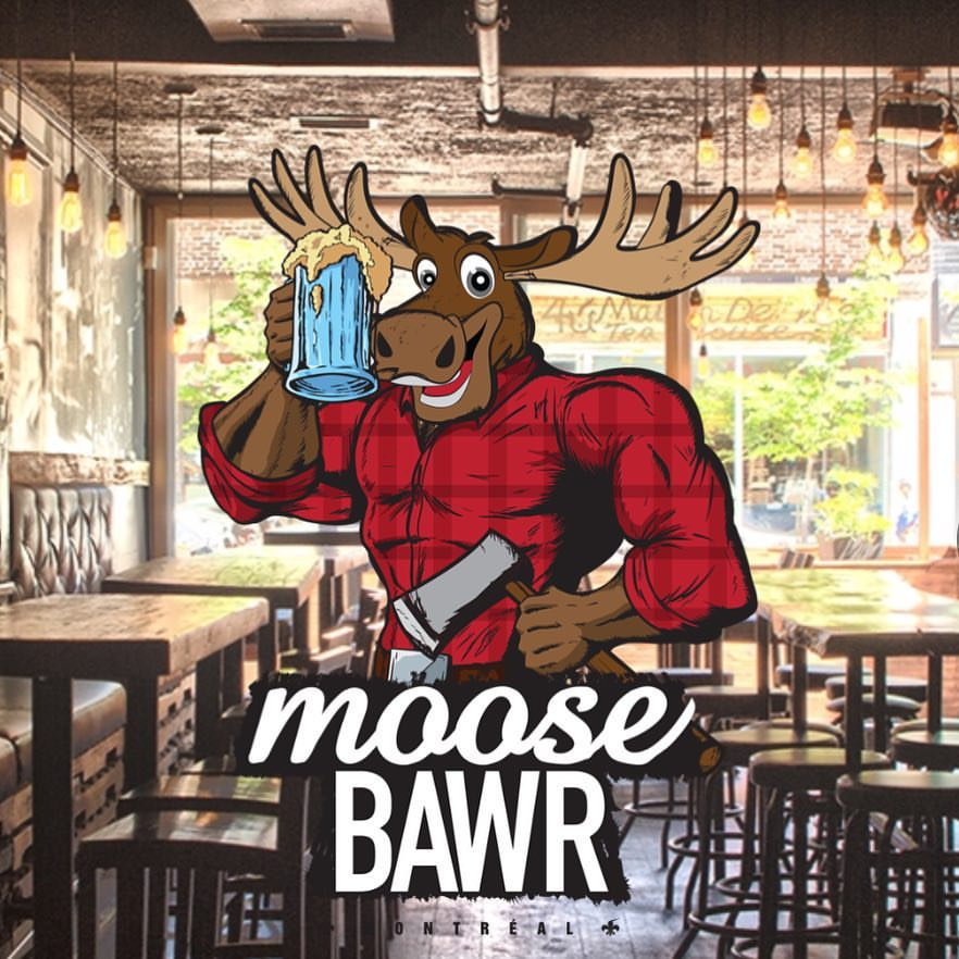 moose picture 8